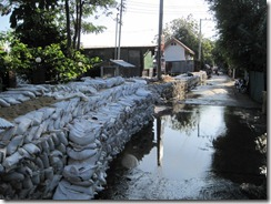 2011_10_14 Bangkok Flooding (42)