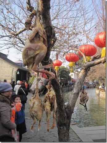 2012_01_26 Zhujiajiao (42)