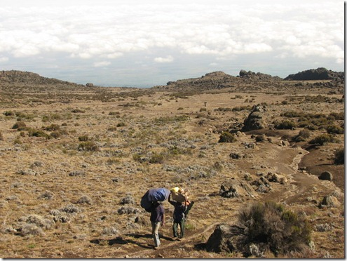 Kili climb541