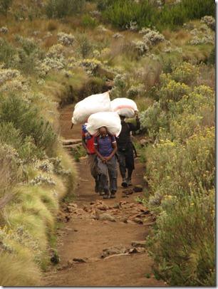 Kili climb902