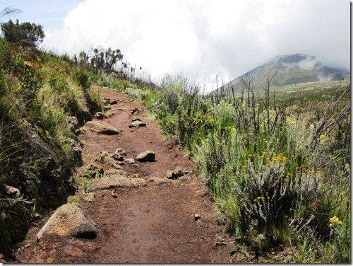The Routes of Kilimanjaro (6/6)
