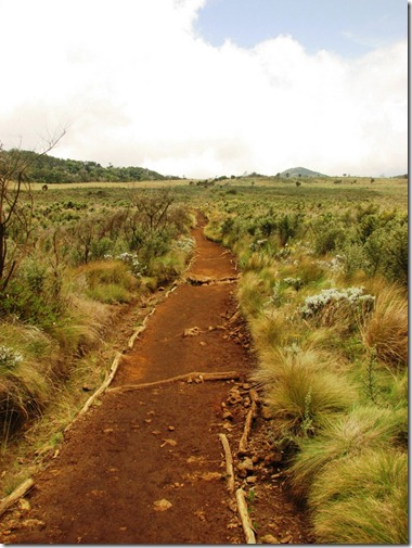 The Routes of Kilimanjaro (5/6)