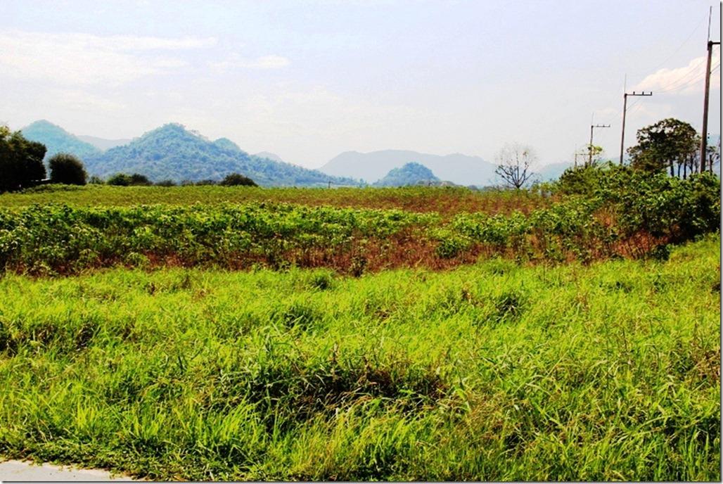 2012_02_17 Khao Yai (32)