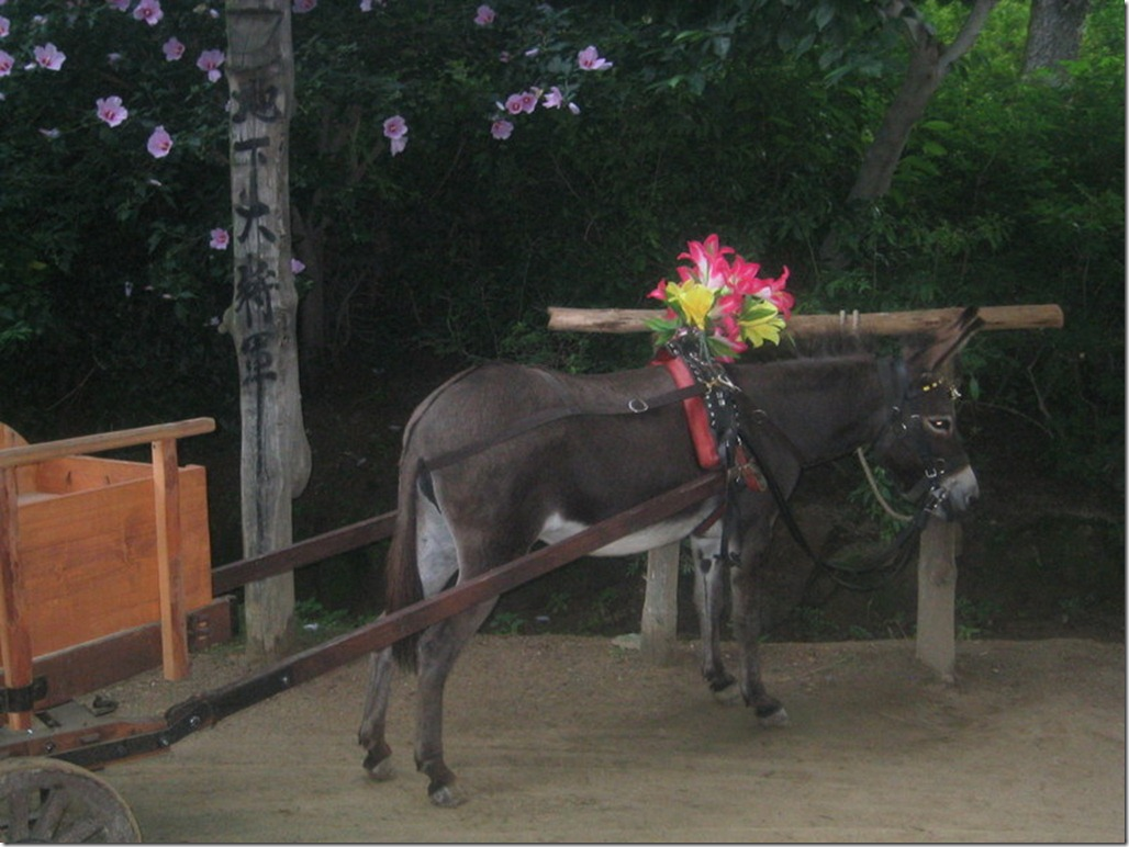 2005_07_15 Korean Folk Village (35)