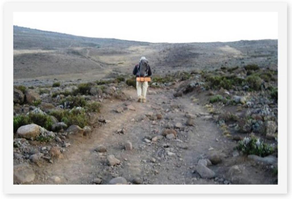 2011_12_29 Kilimanjaro (5)