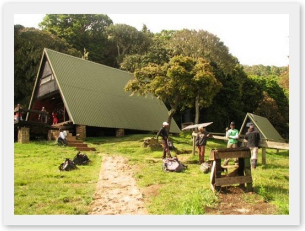 2011_12_29 Kilimanjaro (8)