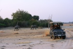Elephants and tourists in South Luangwa National Park, Zambia