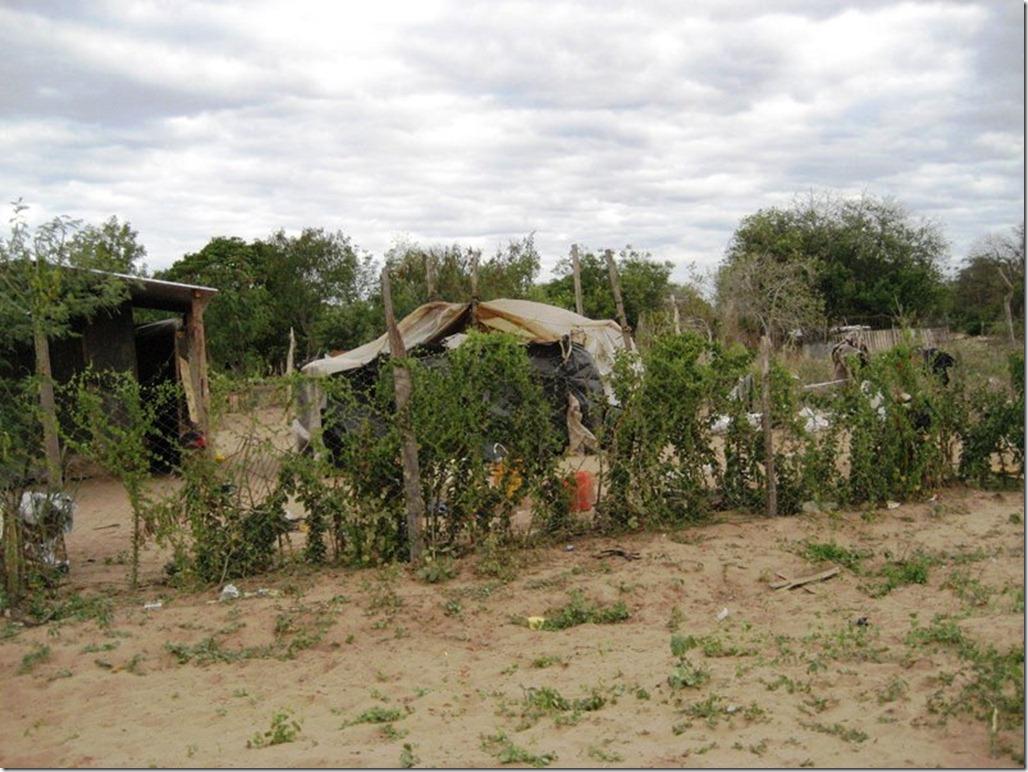 2009_06_20 Paraguay Indigenous (12)