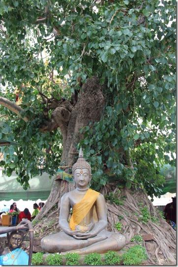 2012_08_11 Ayutthaya (10)