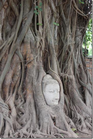 2012_08_31 Wat Mahathat (6)