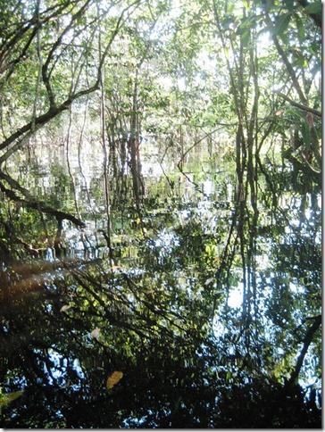 2008_07_18 Brazil Piranhas (5)