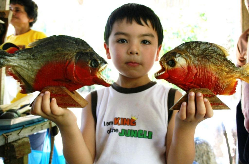 Piranhas!