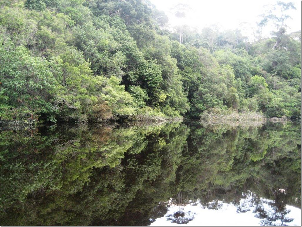 2008_07_17 Brazil Amazon River (10)