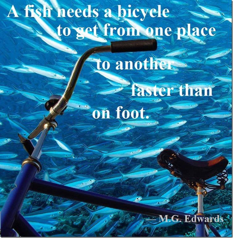 fish bicycle