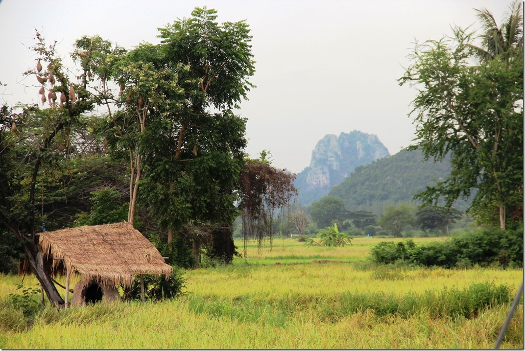 2012_09_15 Thailand Hua Hin Countryside (6)