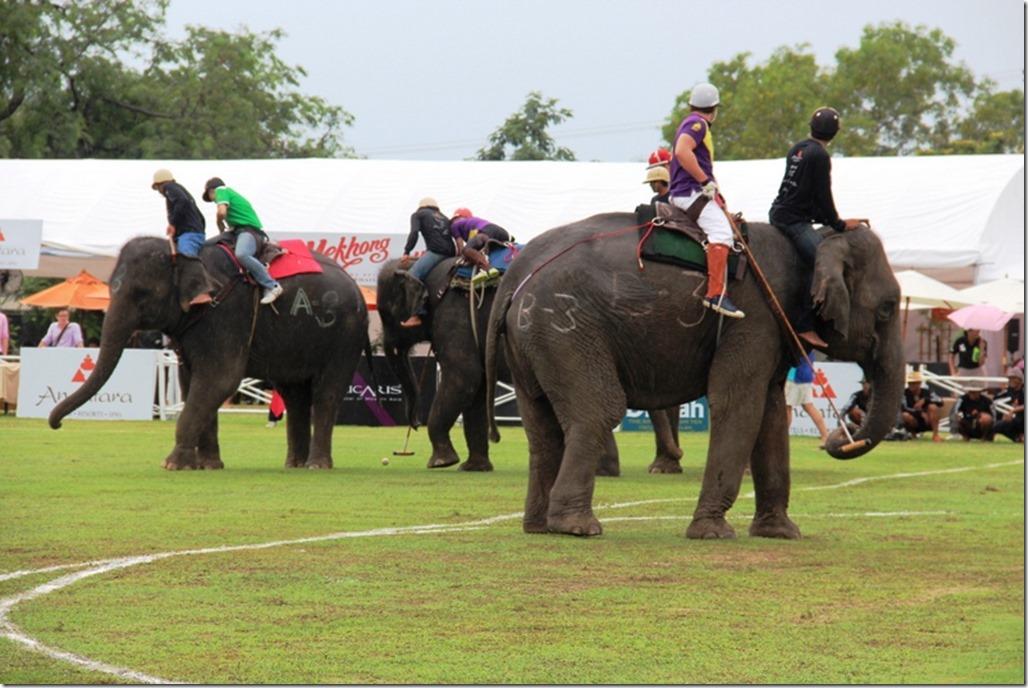 2012_09_06 Thailand Hua Hin Elephant Polo (15)