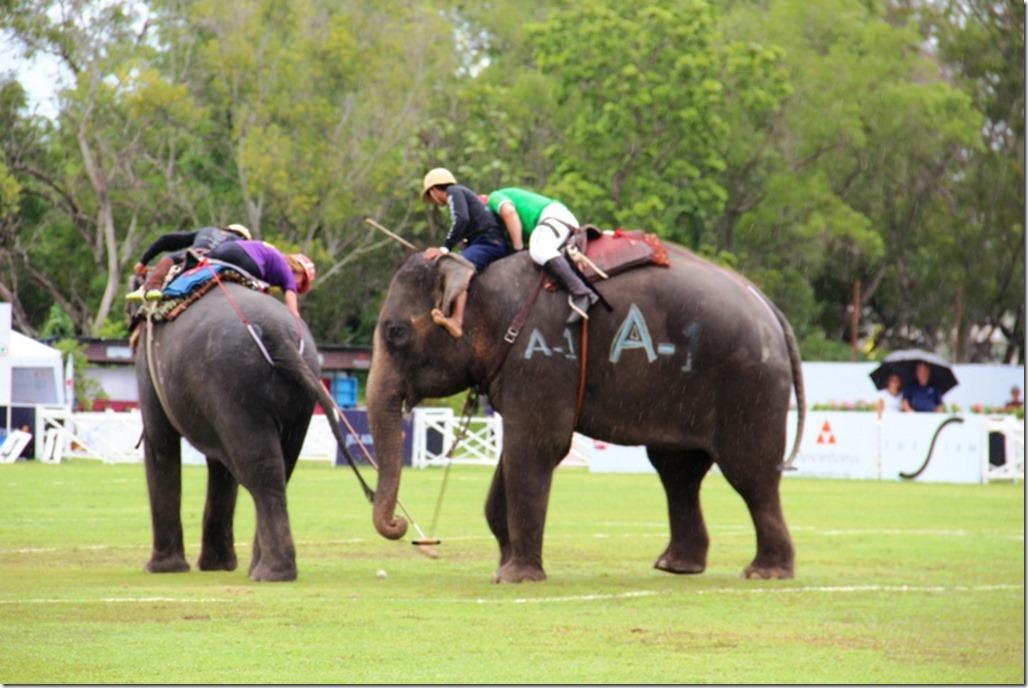 2012_09_06 Thailand Hua Hin Elephant Polo (16)