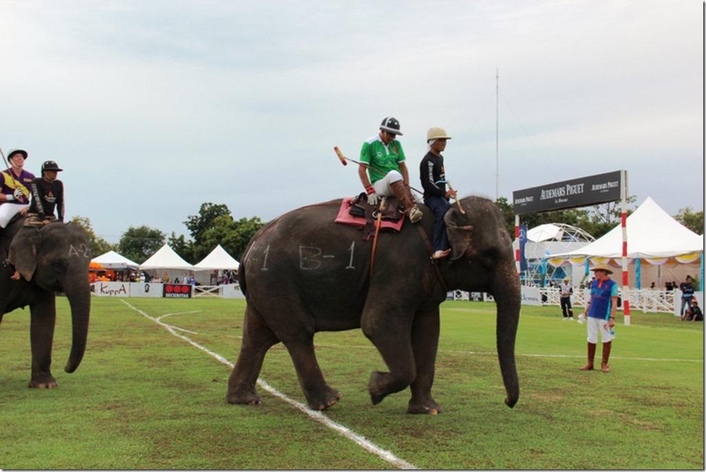 2012_09_06 Thailand Hua Hin Elephant Polo (18)