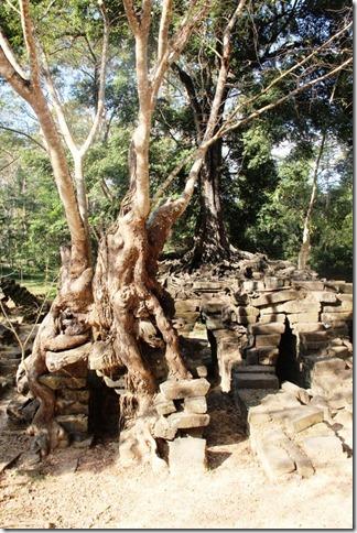 2012_12_27 Cambodia Angkor Thom