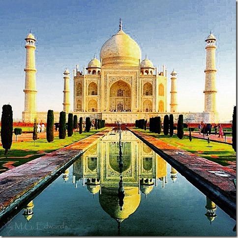 2015_03 India Instagram IMG_5471-1