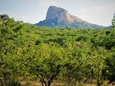 2010_05_03 Zimbabwe IMG_2473