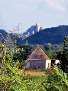 2010_05_03 Zimbabwe IMG_2478