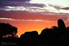 2010_07_04 Zimbabwe IMG_0370